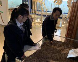 丸山動物園訪問(環境・バイオ実習)