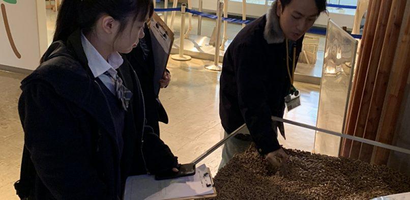 円山動物園訪問(環境・バイオ実習)